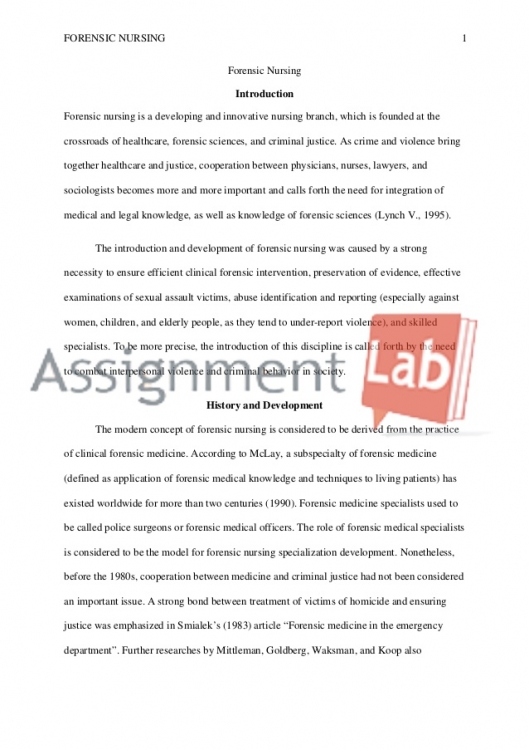 Elementary School Personal Essay Writing
