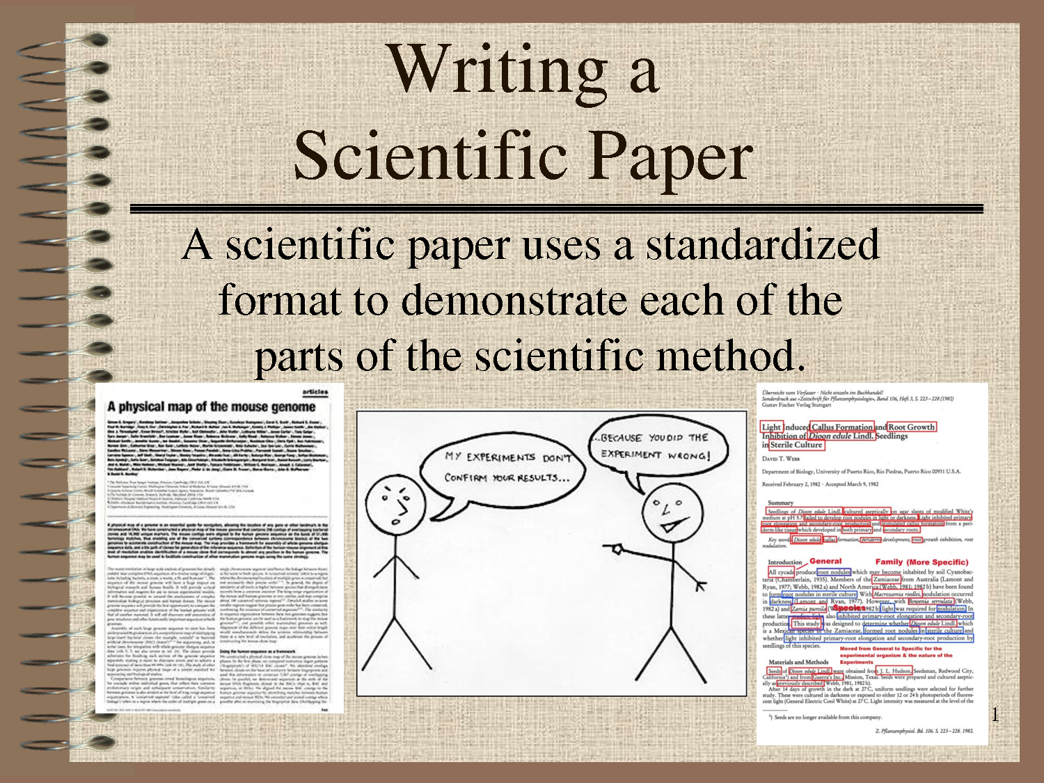 scientific essay Techniques and strategies for writing lab reports and scientific papers for class projects.